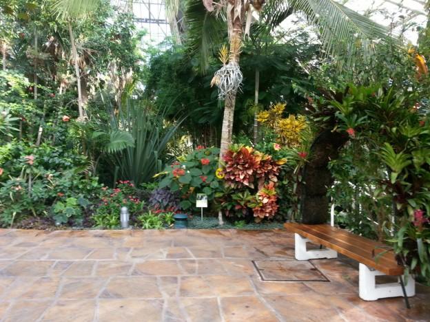 Même en automne votre jardin offre un paysage coloré
