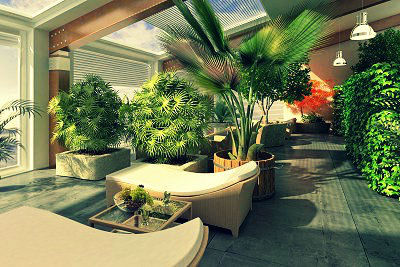 Un intérieur ensoleillé avec des plantes bien entretenues !